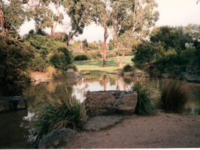 Bellbird Dell Pond Old